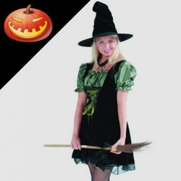 MAGIC SPELL WITCH COSTUME