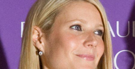 Gwyneth Paltrow Goop sex toy guide